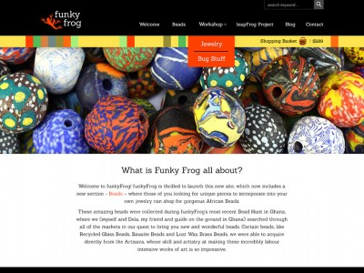 DS_website_Vancouver-Graphic-Designer_Web-Design_FunkyFrog1